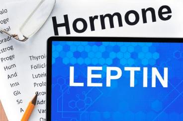 leptin resistance pcos